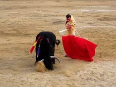Corrida in Andalusia
